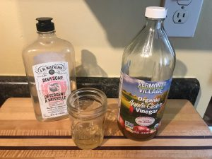 fruit fly trap recipe