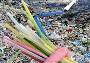Dispposable Straw Pollution
