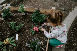 Celebrate Earth Day 2020 at home - Garden