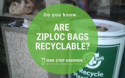 Are Ziploc Bags Recyclable?