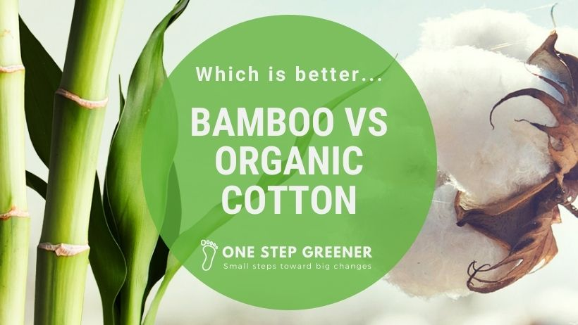 Bamboo vs Organic Cotton - Featured Image