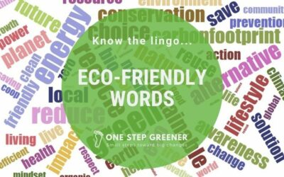 15 words for an eco-friendly mindset.