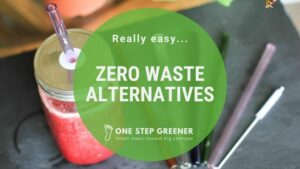 Zero Waste Alterneatives for Beginners - Featured Image