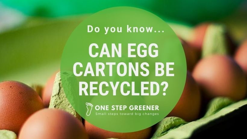 Can egg cartons be recycled?
