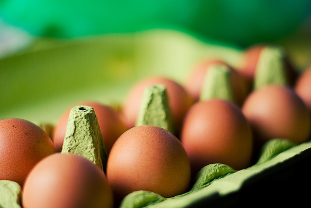 Can Egg Cartons be Recycled - Molded Pulp Egg Carton