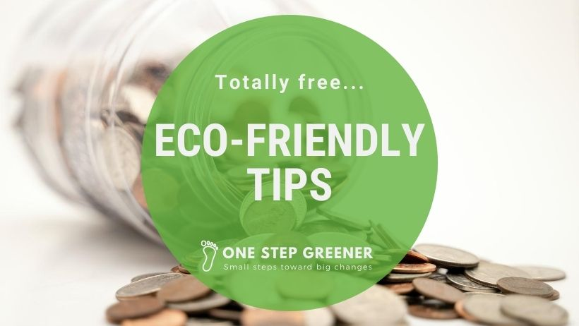 Easy eco-friendly tips that are totally free