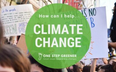How can I help with climate change?