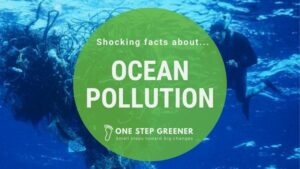 Trash Pollution in the Ocean - Featured Image