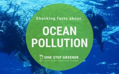 Trash pollution in the ocean – Let's clean it up