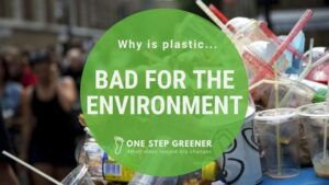 Why is Plastic Bad for the Environment - Featured Image