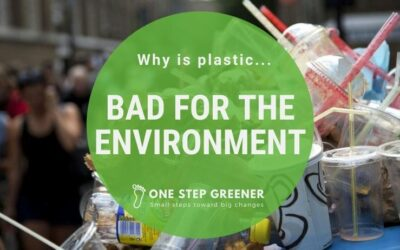 Why is plastic bad for the environment?