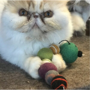 Eco-Friendly Gifts-Cat Toys
